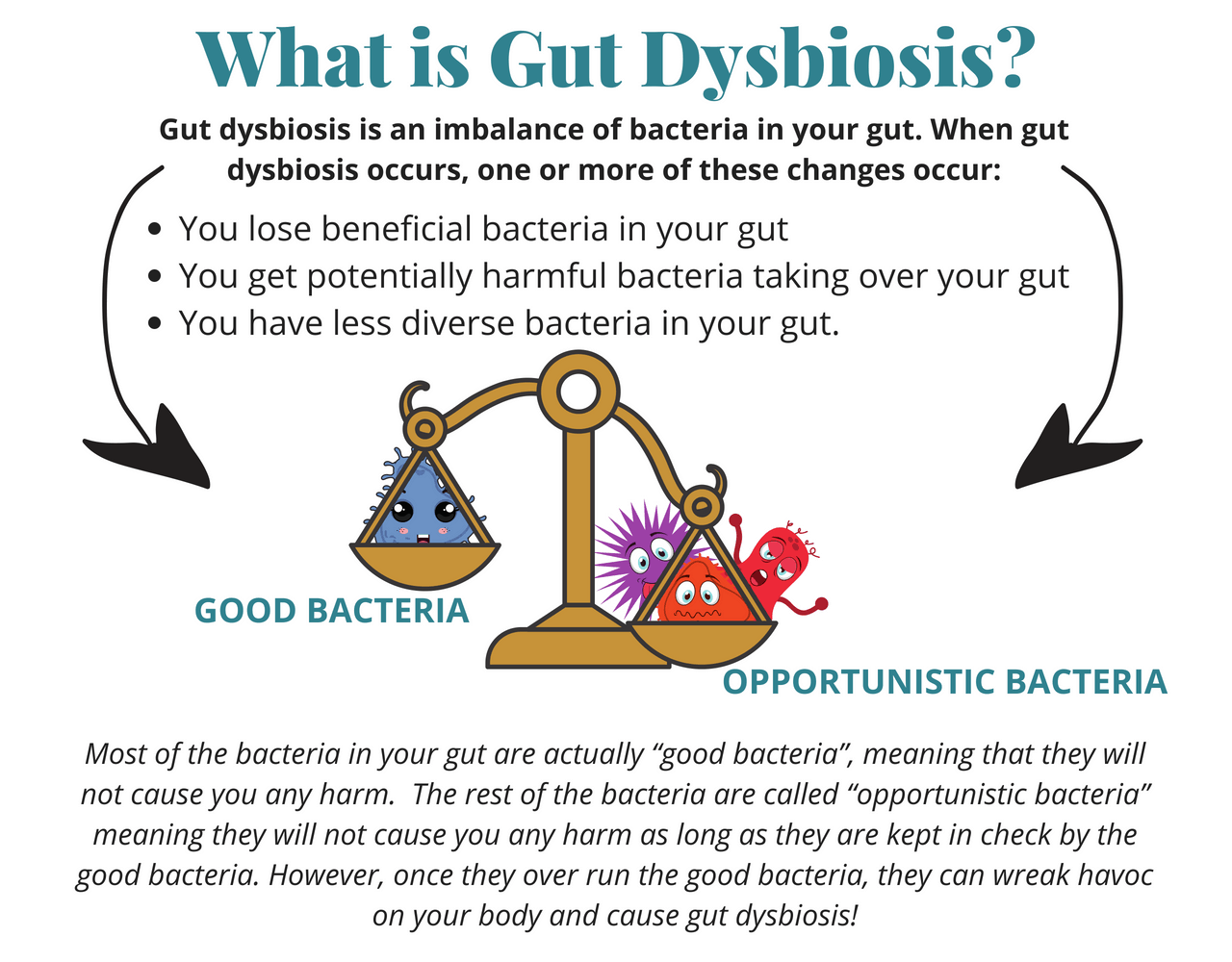 What is Gut Dysbiosis?