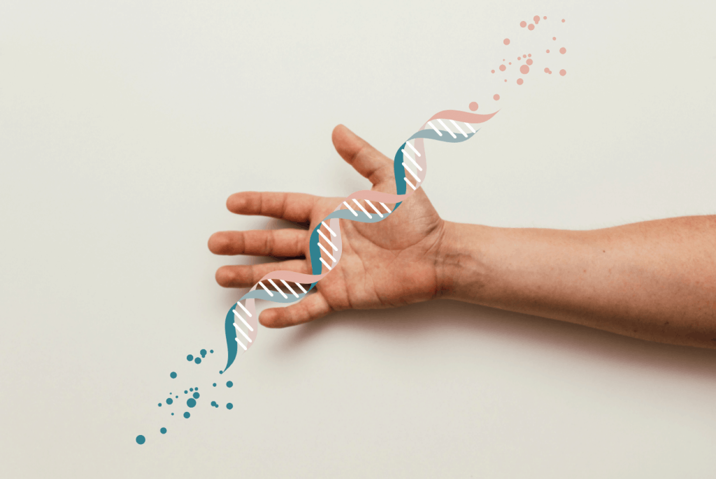 The Truth about the MTHFR Gene Mutation and What You Need to Know