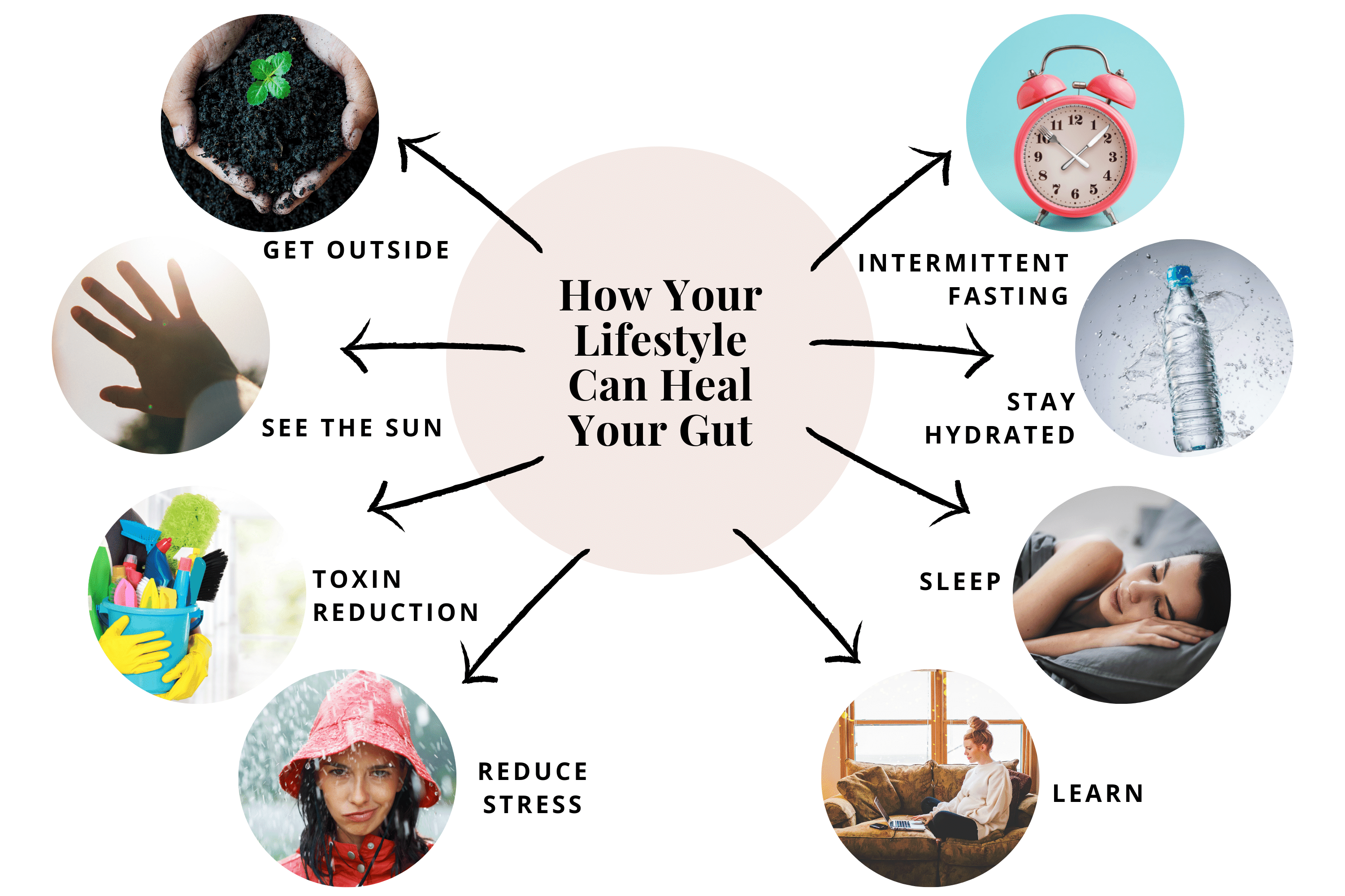The Ultimate Guide to Gut Health