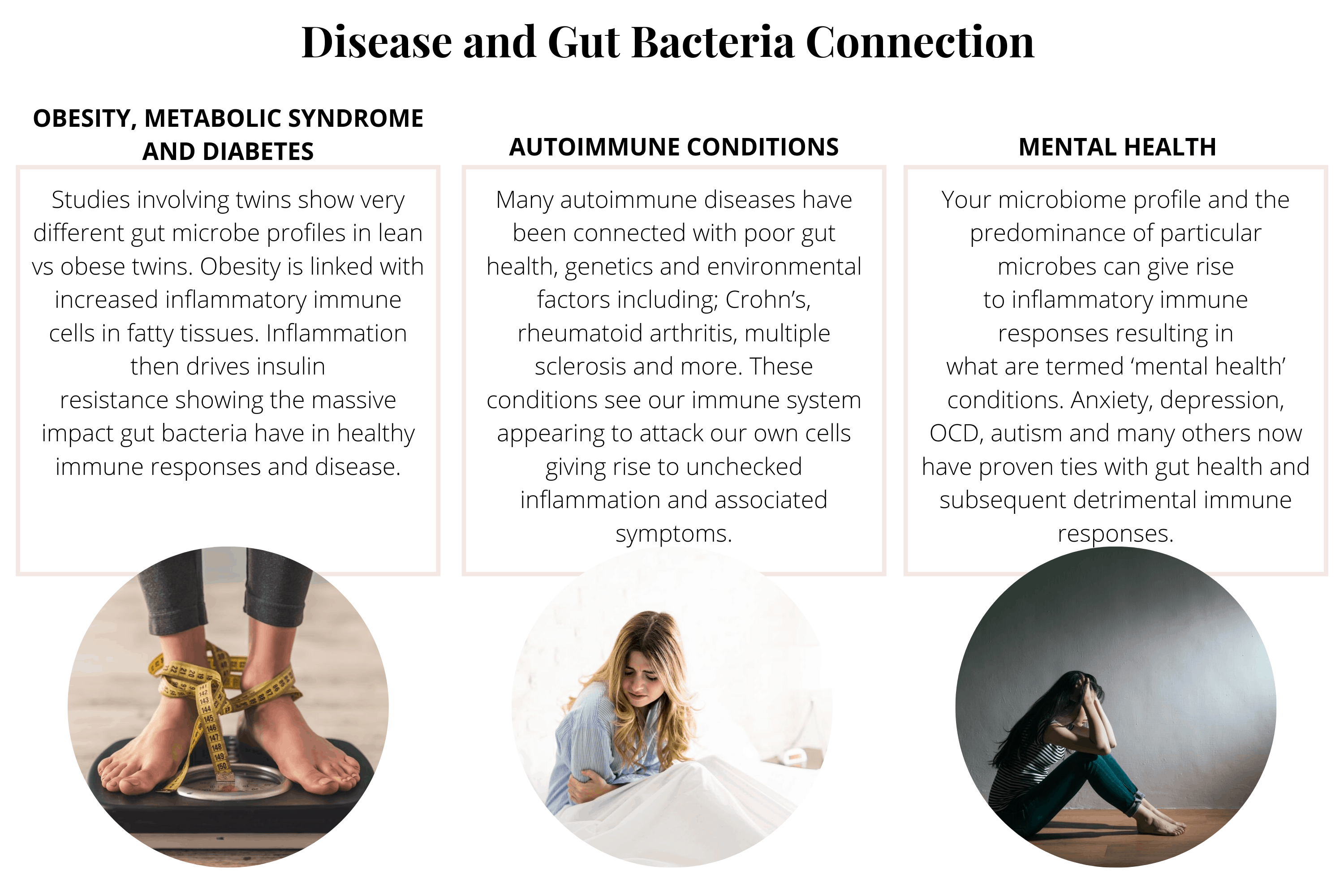 Gut-Immune System Connection | pranathrive.com